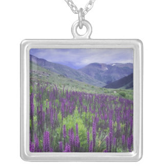 Mountains and wildflowers in alpine meadow, 2 square pendant necklace