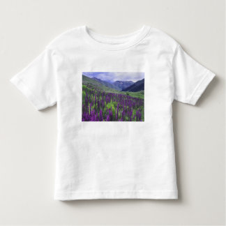 Mountains and wildflowers in alpine meadow, 2 t shirt