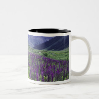 Mountains and wildflowers in alpine meadow, 2 Two-Tone mug
