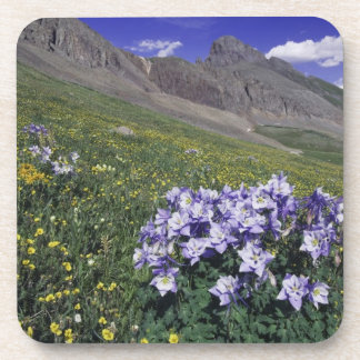 Mountains and wildflowers in alpine meadow, Blue Drink Coasters