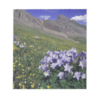 Mountains and wildflowers in alpine meadow, Blue Notepad