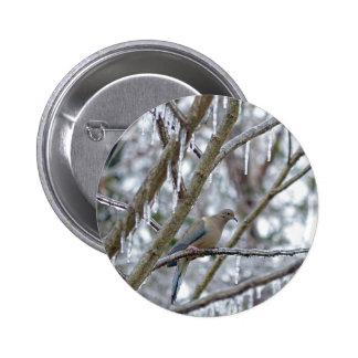 Mourning Dove 6 Cm Round Badge