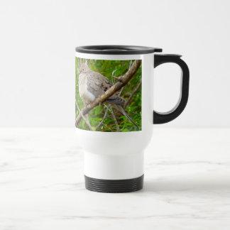 Mourning Dove Bird Travel Mug