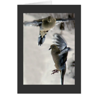 Mourning Dove Card