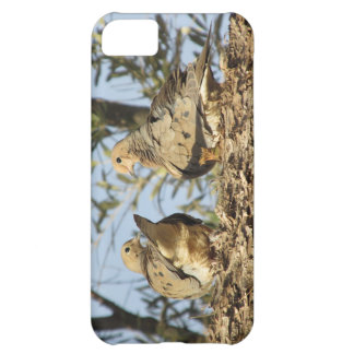 Mourning Dove Couple Cover For iPhone 5C