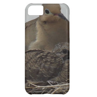 Mourning Dove Family iPhone 5C Cases