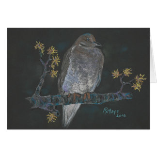 Mourning Dove on a Witch Hazel branch Greeting Card