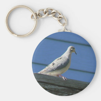 Mourning Dove on Deck Key Ring