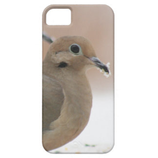 Mourning dove photography iPhone 5 cases