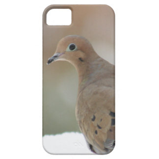 Mourning dove photography barely there iPhone 5 case