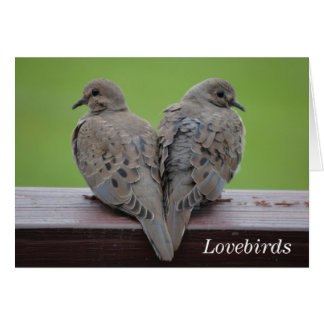 Mourning Doves Stationery Note Card