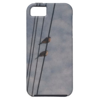 Mourning Doves on Wire iPhone 5 Cases
