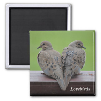 Mourning Doves Square Magnet