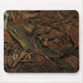 Mourning Gecko Mouse Mat