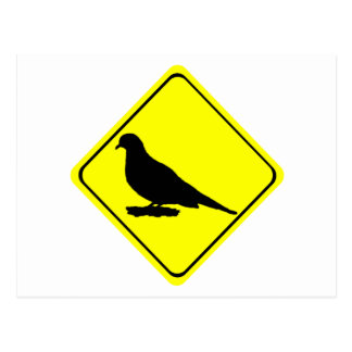 Mourning Love or Turtle Dove Caution Crossing Sign Postcard