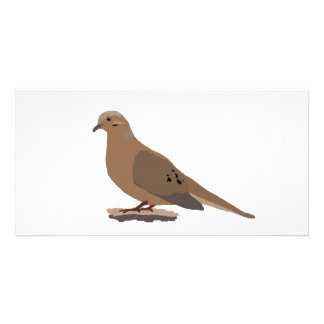 Mourning, Love or Turtle Dove Digitally Drawn Bird Photo Card