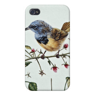 Mourning warbler flowers covers for iPhone 4