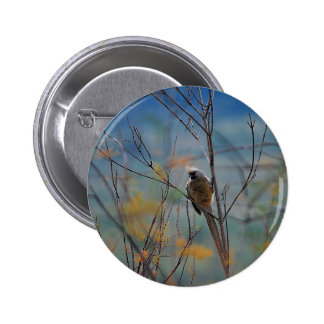 Mouse bird in the tree 6 cm round badge