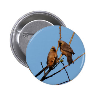 Mouse birds in the tree 6 cm round badge