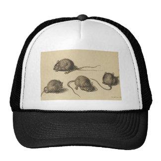 mouse-clipart-2 cap