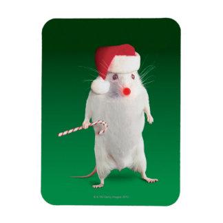 Mouse dressed as Santa Claus Rectangular Photo Magnet