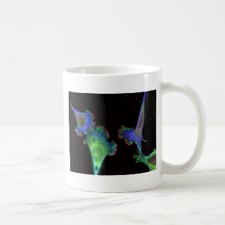 Mouse embryonic fibroblasts coffee mug