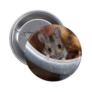 Mouse in a teapot 6 cm round badge