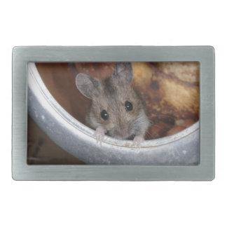 Mouse in a teapot rectangular belt buckle