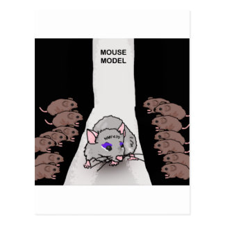 Mouse Model Postcard