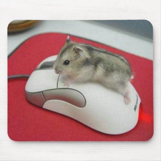 Mouse On A Mouse Mousepad