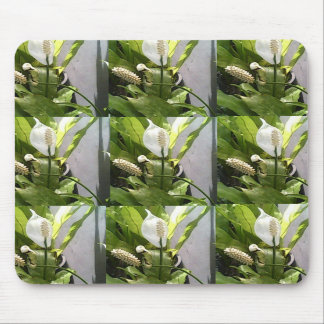 Mouse Pad - Anthurium Flower Images