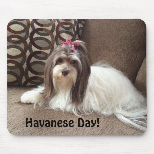Mouse Pad for Havanese Dog Lovers: Havanese Day!