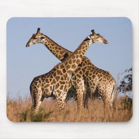 Mouse PAD giraffes