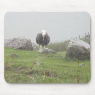 Mouse Pad / Mouse Mat With Sheep Picture (Cumbria)