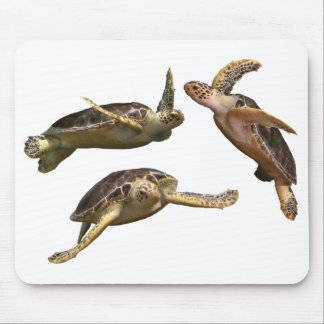 Mouse pad of aoumigame, No.01