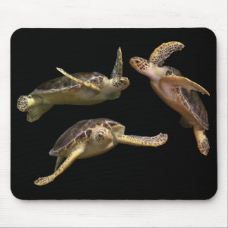 Mouse pad of aoumigame, No.02