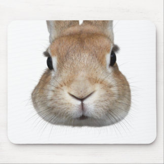 Mouse pad of face of rabbit, No.01