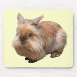 Mouse pad of lion Rabbit, No.03