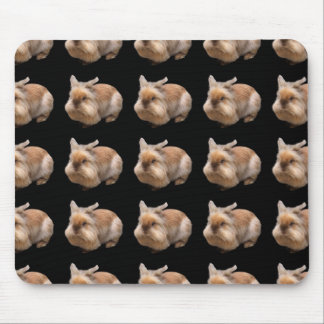 Mouse pad of lion Rabbit, No.05
