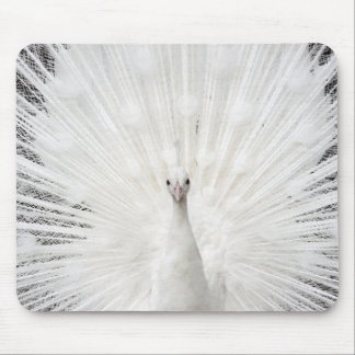 Mouse pad of margin peafowl, No.02