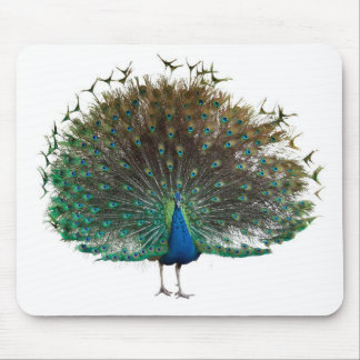 Mouse pad of the Indian peafowl, No.02