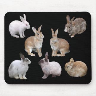 Mouse pad of various rabbits, No.02