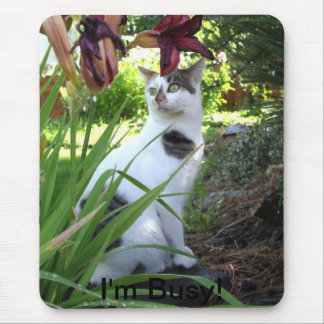 Mouse Pad with Cat photo and words I m Busy
