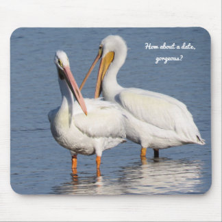Mouse Pad with Two Funny Pelicans