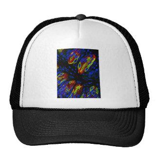 Mouse tongue epithelium hat