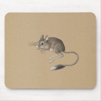 Mouse with long tail  - old illustration mouse pad