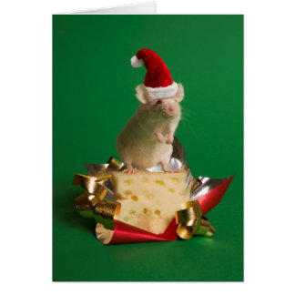 Mouse with Santa's hat with cheese Greeting Card