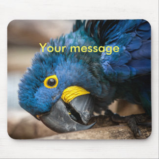Mousemat featuring cute Hyacinth Macaw parrot
