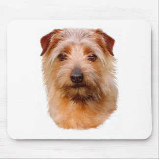 Mousemat : Norfolk Terrier dog