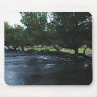 Mousepad: After the rain.